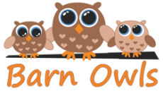 Barn Owls Preschool