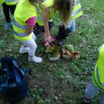 Hunting for conkers and acorns with barn owls preschool